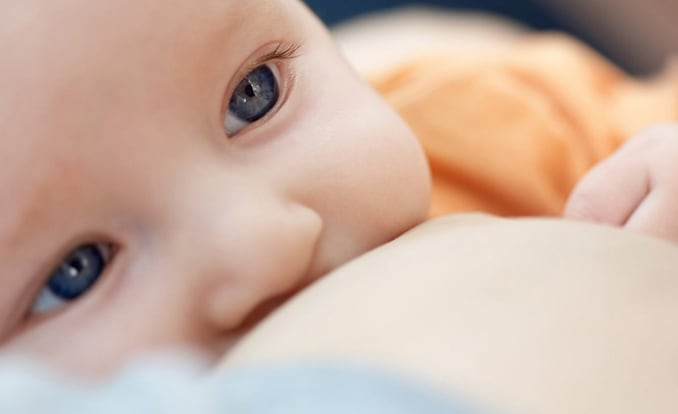 Philips avent breastfeeding in public