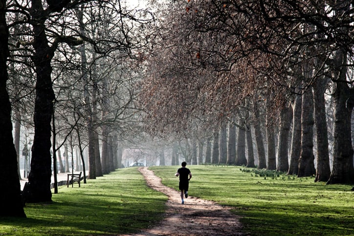 Man runing in park pathway with old trees