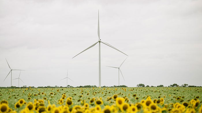 Philips on track to becoming carbon-neutral in its own operations by 2020