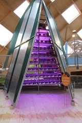 Philips LED horticulture innovation at the Floriade 2012